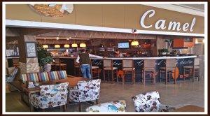 Camel Cafe